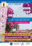SENIOR - HANDICAP - DEPENDANCE - 2015 Web A4.jpg